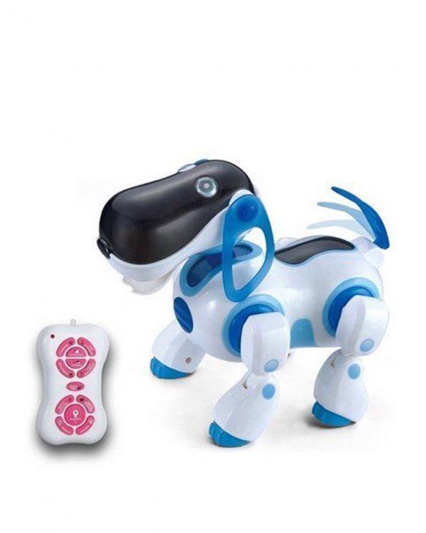 ربات سگ فضایی